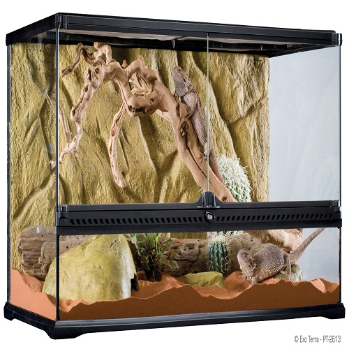 Exo Terra Natural Terrarium Large Wide Reptile City